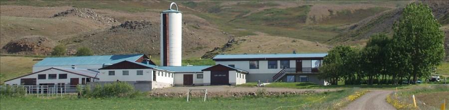 New farm: Hléskógar